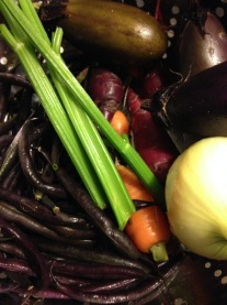 Celery, carrots, eggplant, purple beans and onion